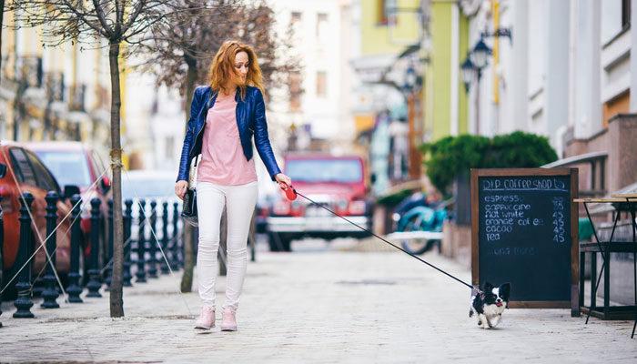 Guinzaglio per cane allungabile