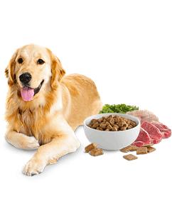 Alimentazione Pets