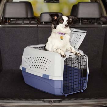 Trasportino per cani economico in plastica