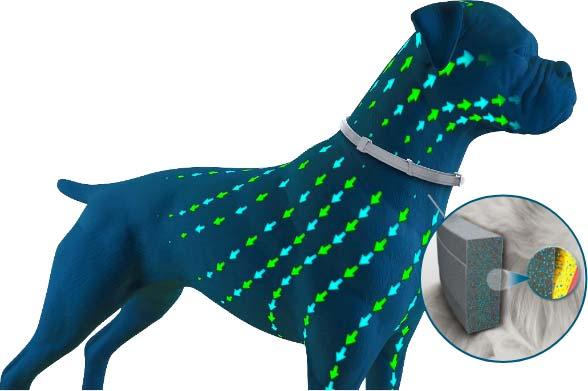 Antiparassitari per cani contro le zecche Seresto funzionamento sistemico