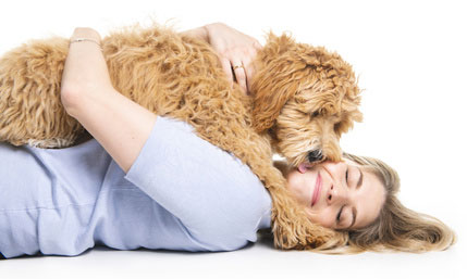 Il cane ti vuole bene davvero quando ti bacia