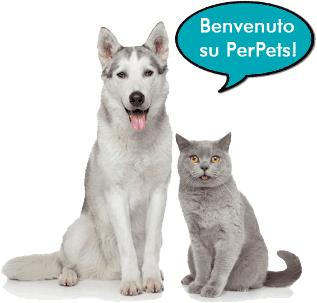 Benvenuto su PerPets