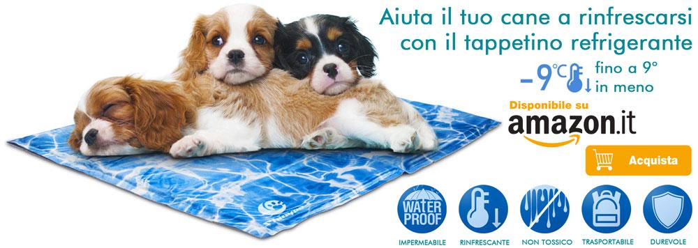 Tappetino refrigerante per prevenzione colpo di calore nel cane