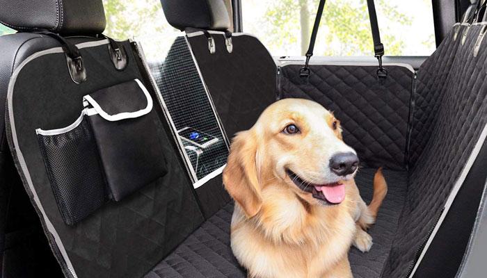 Peli del cane in auto come proteggere gli interni