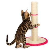 Tiragraffi per gatti a tronchetto