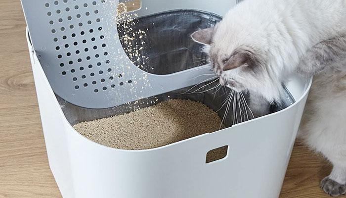 Lettiera gatto verticale per limitare lo sporco in casa