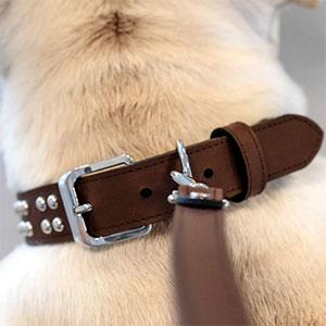 Collare in Pelle per Cani Modello Ball Studs Aura Saddle