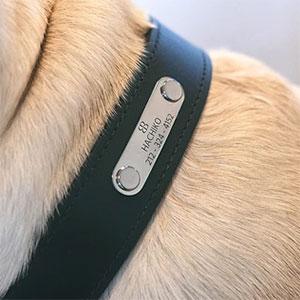 Collare in Pelle per Cani Modello Nature Off Black