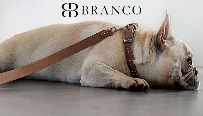 Collari in pelle per cani lusso e qualita by Branco