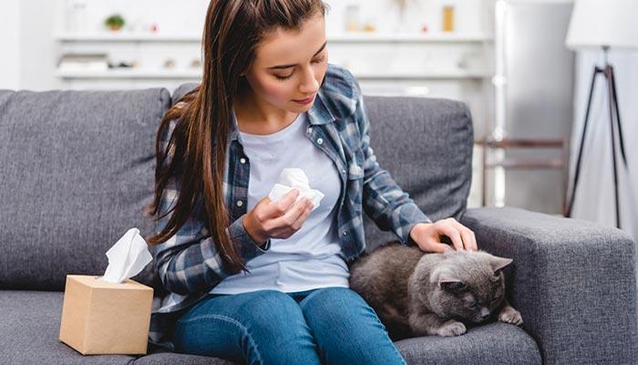 Gatto anallergico: come ridurre l'allergia al pelo del gatto