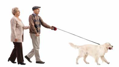 Pet Therapy con il cane per bambini